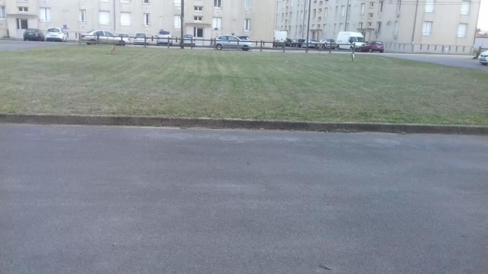 entretien d'espace vert public