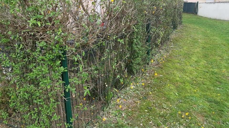 entretien espaces verts parcs et jardins